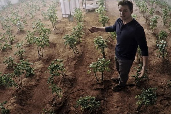 matt-damon-potato farmer